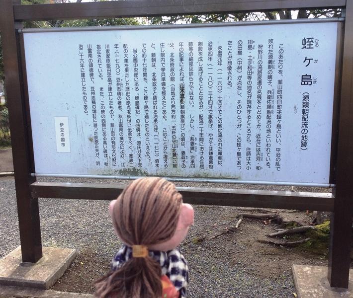 伊豆・三島2019-6-01