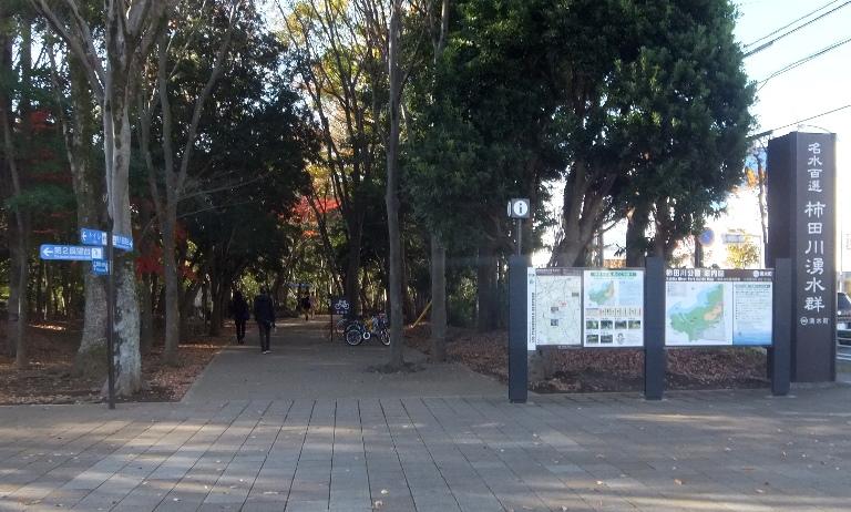 伊豆・三島2019-6-10