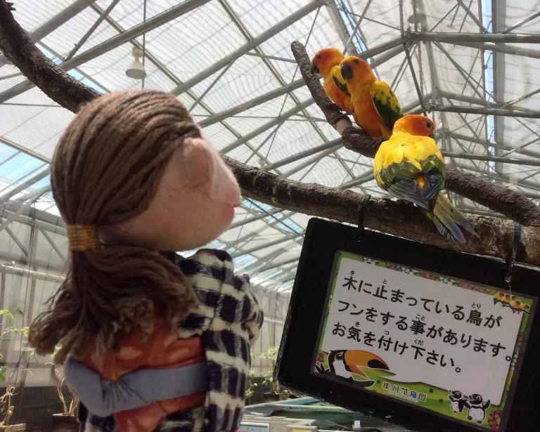花鳥園2019-05