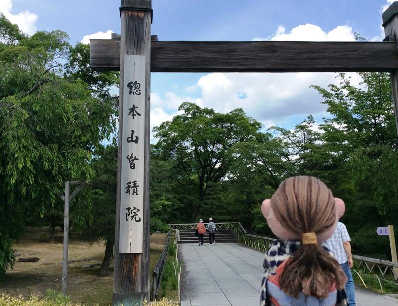 京都2019-01